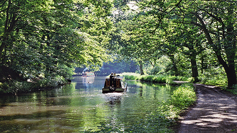 Canal boat on the Basingstoke Canal next to a footpath.